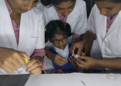 Blood Typing Program