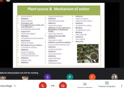 Botany Webinar